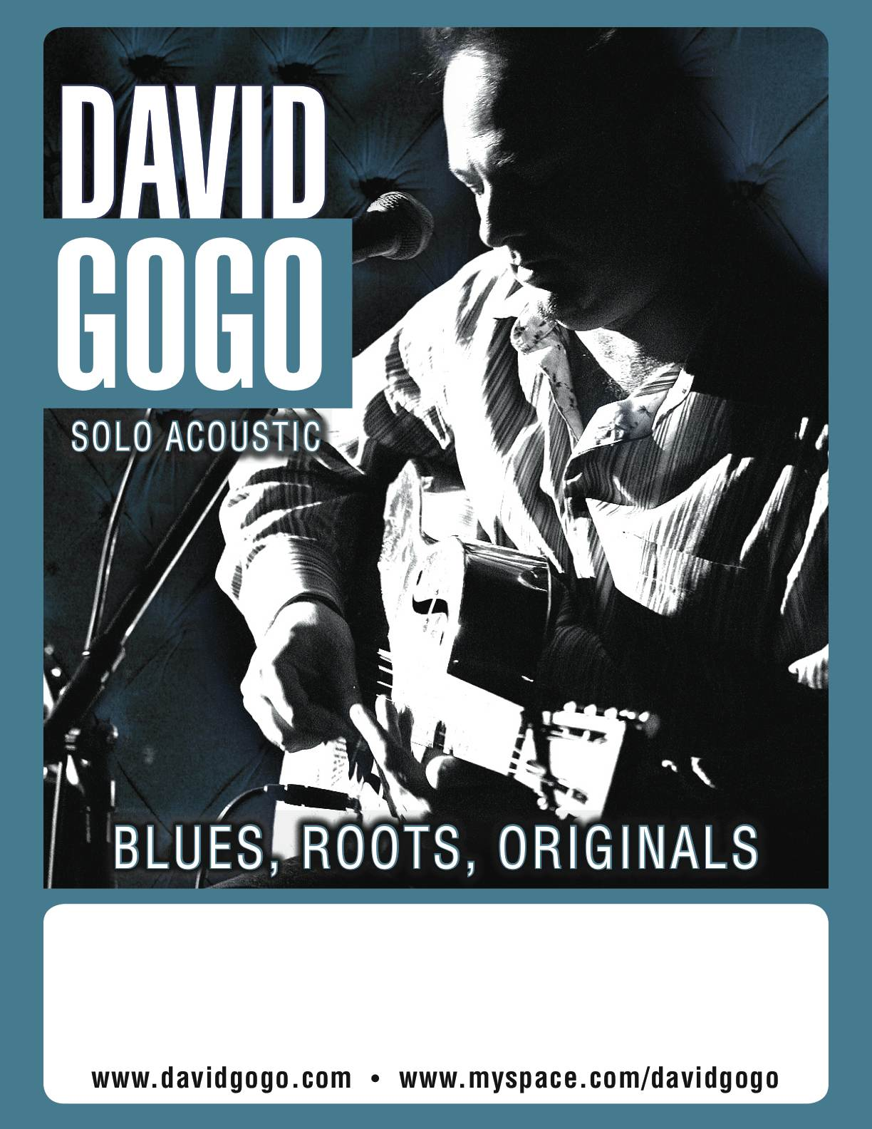 David Gogo Acoustic Poster Small